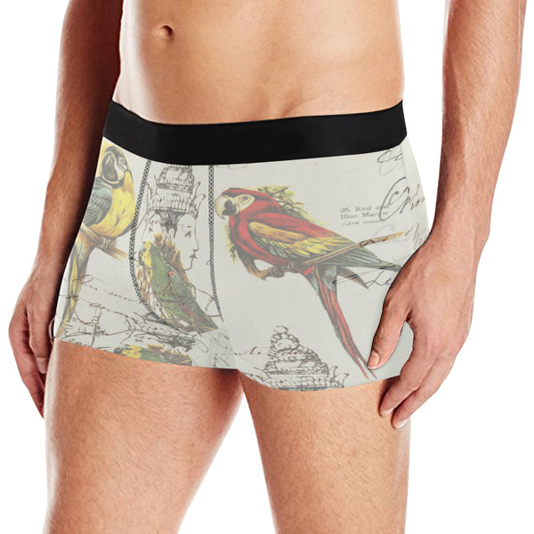 THE PARROT MAP II Men's All Over Print Boxer Briefs