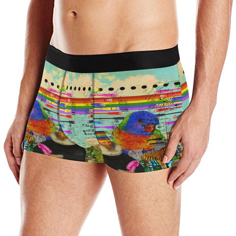 THE BIG PARROT Men's All Over Print Boxer Briefs