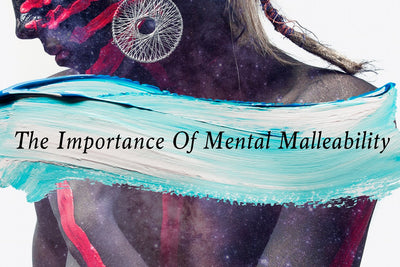 THE IMPORTANCE OF MENTAL MALLEABILITY