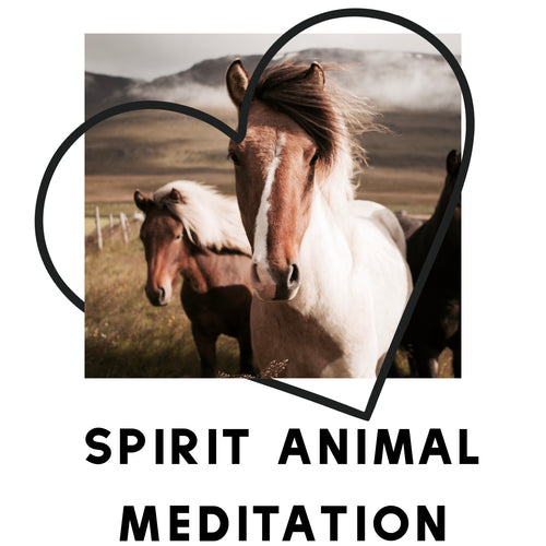 Spirit Animal Meditation