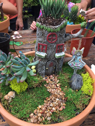 4/03/2021: Fairy Garden Workshop