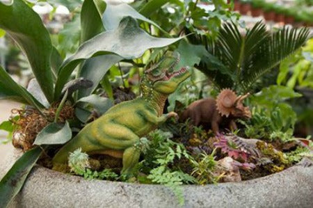 4/17/2021: Dino Herb Garden Workshop