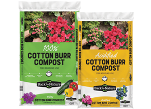 Acidified Cotton Burr Compost