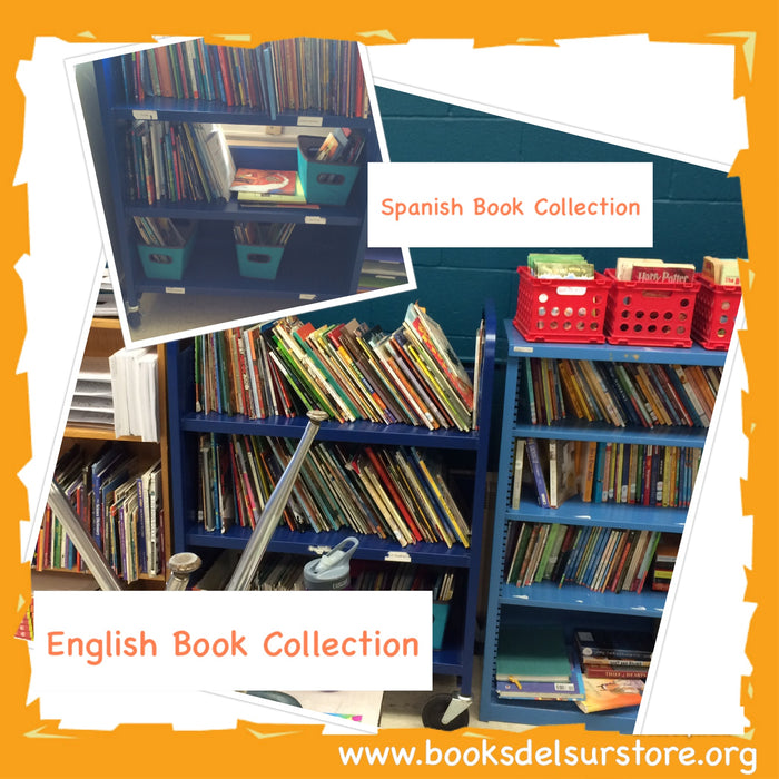 Spanish Book Collections on shelves