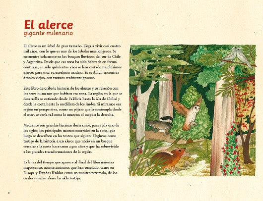 inside page has text on the left and an illustration of a flying owl and other animals in the forest