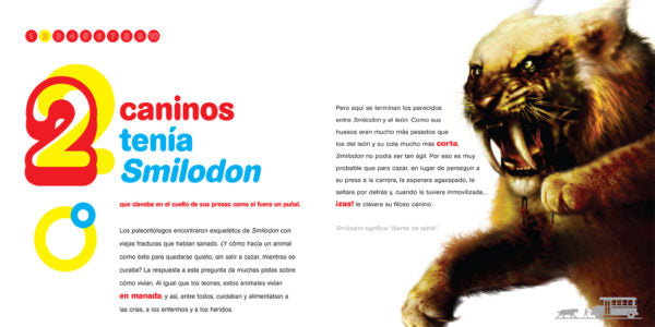 Page of the book with an illustration of a Smilodon cat