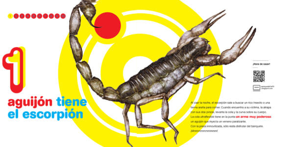 inside page depicting an scorpion