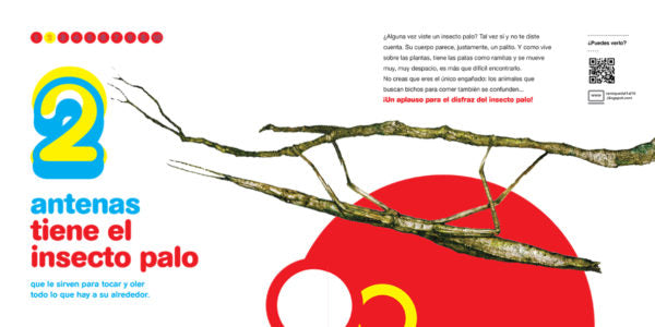 inside page depicting a stick insect