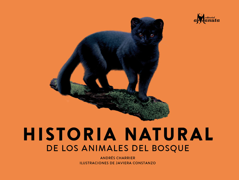 book cover shows a black cat