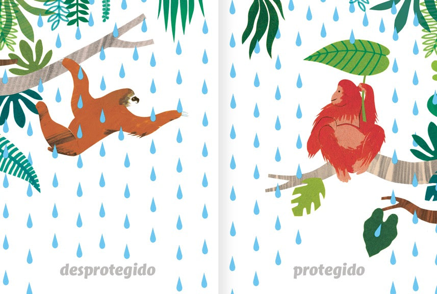 inside pages illustrate apes in the rain