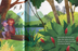inside pages illustrate two monkeys in the jungle