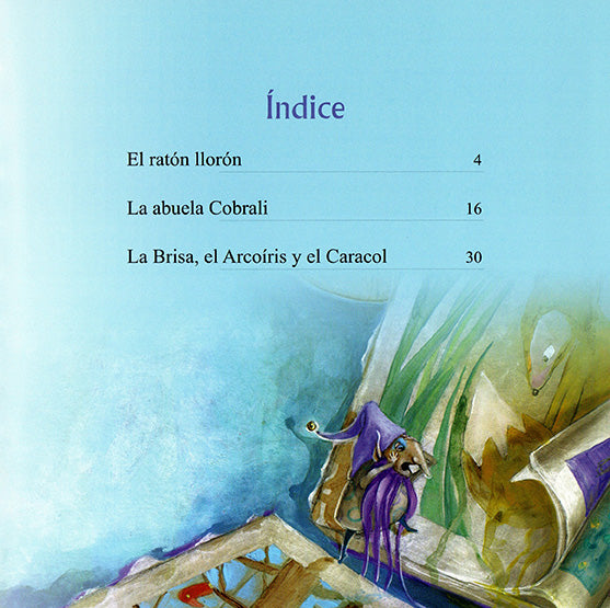 book page illustrates the index