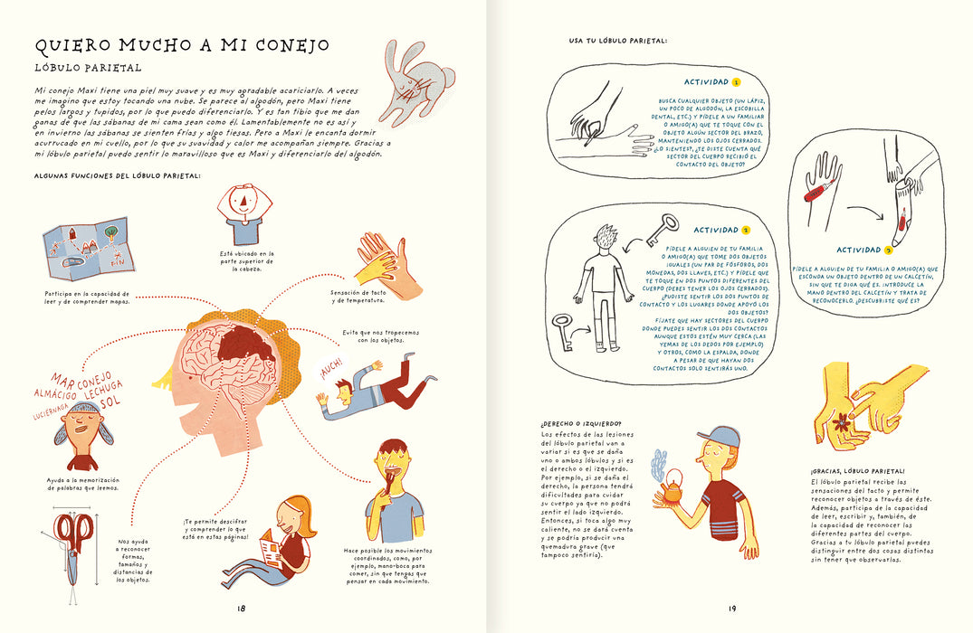 book page illustrates different parts of the brain and activities associated with each part