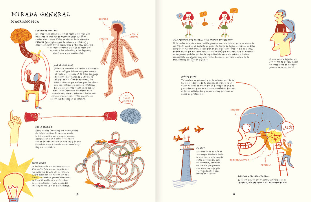 book page illustrates human brain diagrams and ways thinking works
