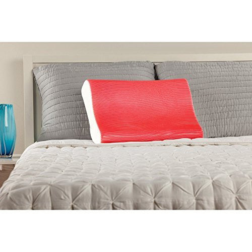 Sealy Memory Foam & Hydraluxe Gel Contour Pillow
