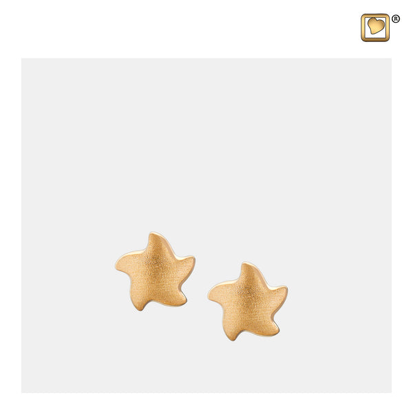 Stud Earrings: Angelic Star - Gold Vermeil Two Tone - ER1031