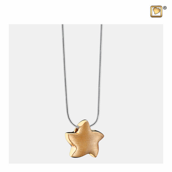 Pendant: Angelic Star - Gold Vermeil Two Tone - PD1031