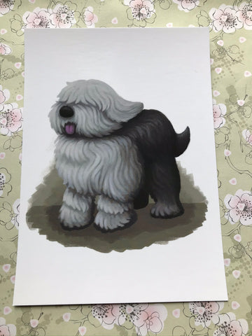 Dogs: English Sheepdog Post Card