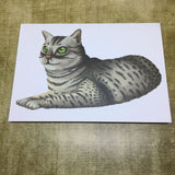 Cats: Egyptian Mau Cat Post Card