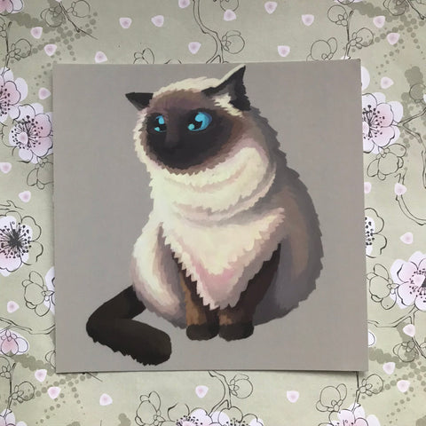 Cats: Himalayan Cat Square Post Card