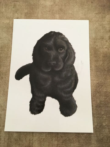 Dogs: Cocker Spaniel Pup Blank Greeting Card