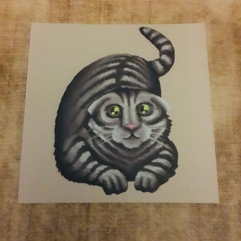 Cats: Scottish Fold Cat Square Post Card
