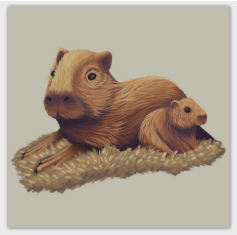 Capybara Square Post Card