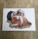 Guinea Pigs Blank Greeting Card