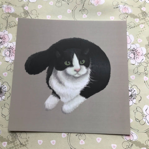 Cats: Black and White  Cat Square Post Card