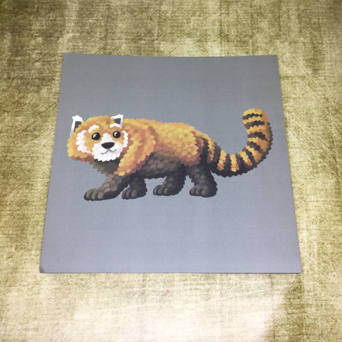 Red Panda Square Post Card (Design 4)