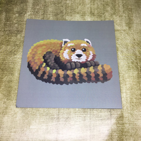 Red Panda Square Post Card (Design 3)