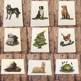 1 x rectangular animal sticker