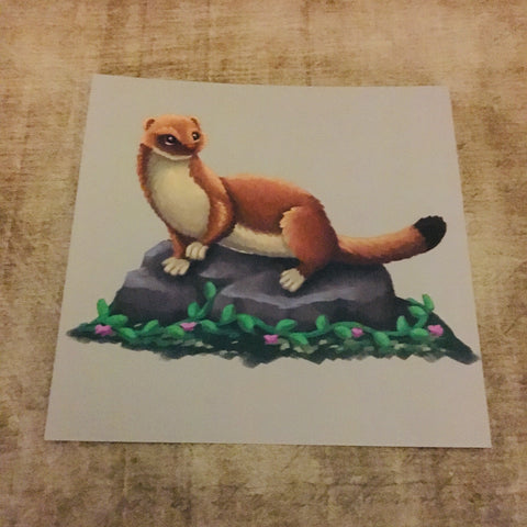 Stoat Square Post Card