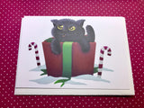 Christmas Cat in a Box Blank Greeting Card