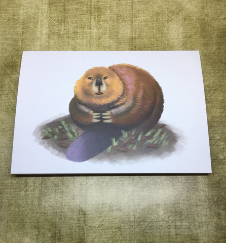 Beaver Blank Greeting Card