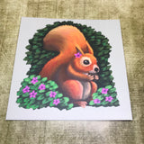 Red Squirrel Square Post Card