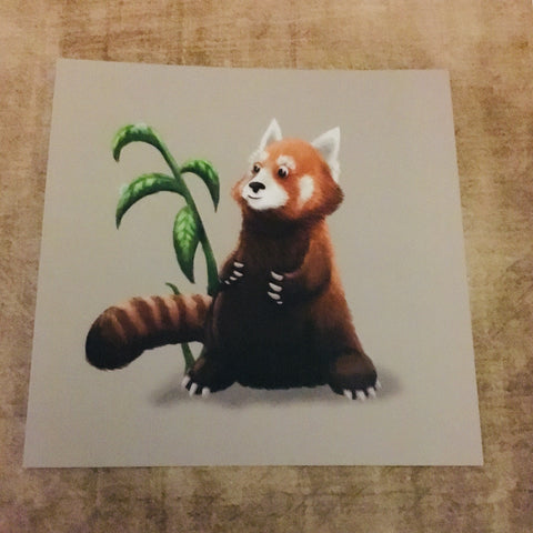 Red Panda Square Post Card