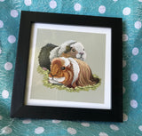 Guinea Pigs Limited Edition Art Print
