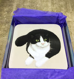 Set of 4 Black and White Cat Coasters