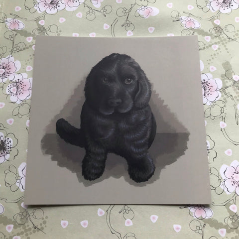 Dogs: Cocker Spaniel Pup Square Post Card