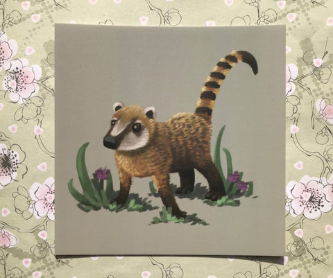 Coati Square Post Card