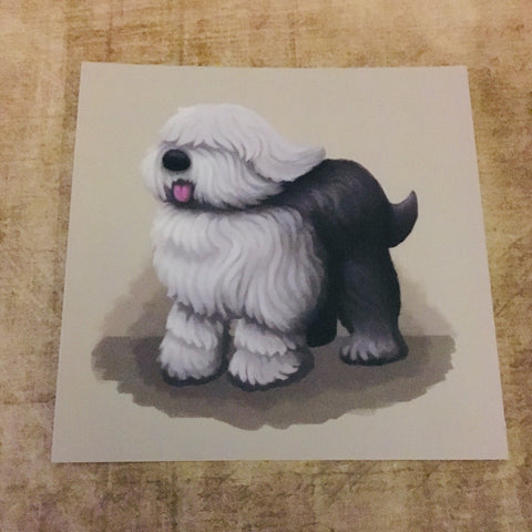 Dogs: English Sheepdog Square Post Card