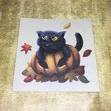Four Seasons Cats: (Pumpkin Cat) Square Post Card