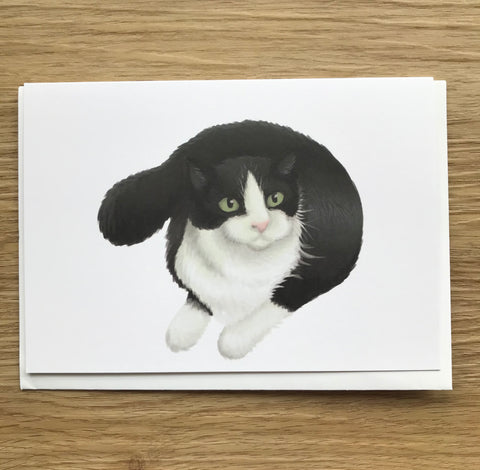 Cats: Black and White Cat Blank Greeting Card