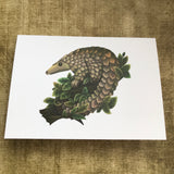 Pangolin Blank Greeting Card