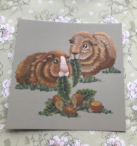 Ginger Guinea Pigs Square Post Card