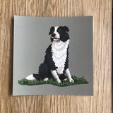 Border Collie Square Post Card