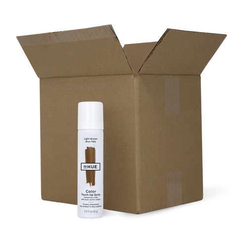 Color Touch-Up Spray Light Brown Case Pack