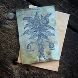 Magical Botanical Poisonous Solanaceae, Mandrake Witching Plant Luxury greeting card.