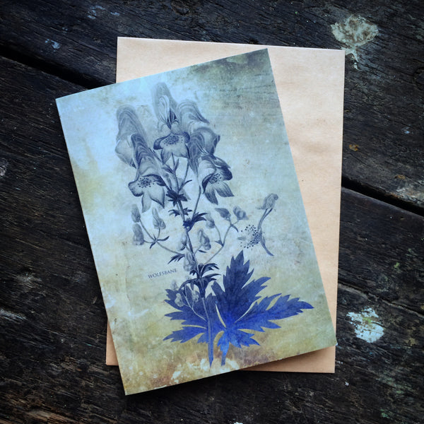 Magical Botanical Poisonous Solanaceae, Wolfsbane Witching Luxury greeting card.
